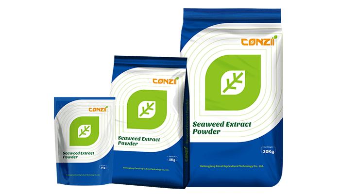 Seaweed-Extract-Powder